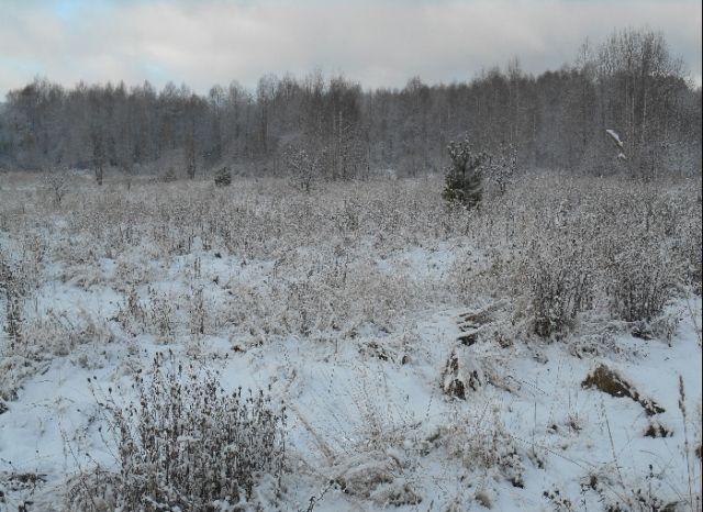 zemelnii_uchastok_zima