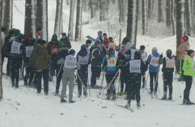 В Судиславле на трассе парка Лобанка состоялись районные соревнования по лыжам