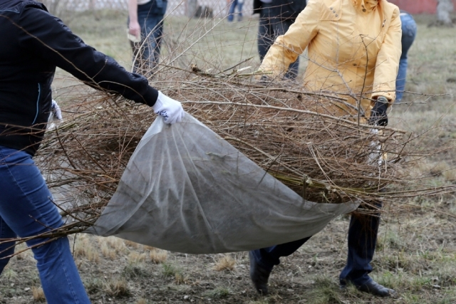 В Судиславском районе с 25 апреля стартует месячник по благоустройству