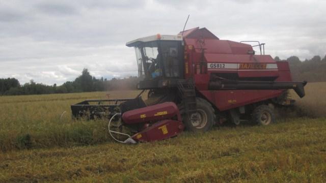 Сельсхозтоваропроизводители Судиславского района приступили к заготовке кормов