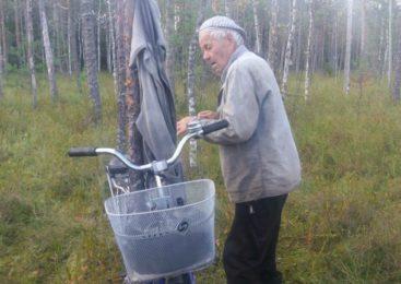 В Судиславле потерявшийся пенсионер целые сутки блуждал по болоту